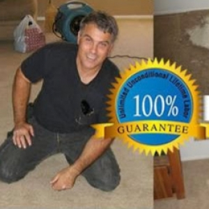 Creative Jacksonville Carpet Repair